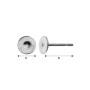 P0725-SWAROVSKI ELEMENTS 1122 Crystal Vitrail Medium 12mm-1buc