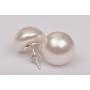 P2746-SWAROVSKI ELEMENTS 1122 Rainbow Dark Foiled 11mm-1buc