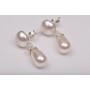 P2747-SWAROVSKI ELEMENTS 1122 Rainbow Dark Foiled 14mm-1buc