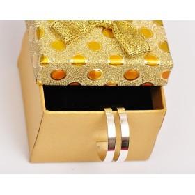 2548-Swarovski Elements 1028 Crystal Foiled PP 5 1.2mm