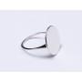 P0439-SWAROVSKI ELEMENTS 1122 Crystal Vitrail Light SS47 11mm